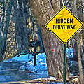 A Yellow Diamond Sign With The Words Hidden Driveway On The Side  by Jeelan Clark