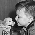 A Young Boy Is Face To Face With A Puppy Tongue. by Underwood Archives