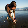 A Young Woman Collects Seashells by Kyle George