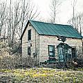Abandoned Adirondack Camp by Maggy Marsh