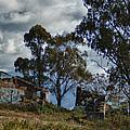 Abandoned Barn by Jill Mitchell