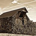 Abandoned Barn by Marcia Colelli