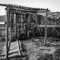 Abandoned Bird Observatory-bw by Fabio Giannini