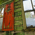 Abandoned Cabin Elkmont - Coming Down Clover by Rebecca Korpita