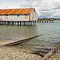 Abandoned Cannery by Brigitte Mueller