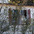Abandoned by Carolyn Fletcher