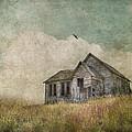 Abandoned by Juli Scalzi
