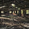 Abandoned by Amanda Elwell