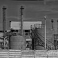 Abandoned Factory At Vadu by Gabriela Insuratelu