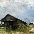 Abandoned Farm Home - Kansas by Liane Wright