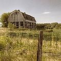 Abandoned Farm by Margie Hurwich