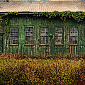 Abandoned Green Sugar Mill Building Dsc04353 by Greg Kluempers