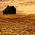 Abandoned Homestead Series Golden Sunset by Cathy Anderson