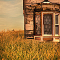 Abandoned House In Grass by Jill Battaglia