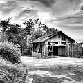 Abandoned La Zoo Dr's  Barn House by Purple Moon