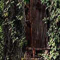 Abandoned by Lilliana Mendez