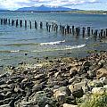 Abandoned Old Pier In Puerto Natales Chile by Ralf Broskvar