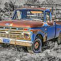 Abandoned Pick Up Truck by Susan Leonard