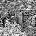 Abandoned Root Cellar - Alstown - Washington - May 2013 by Steve G Bisig