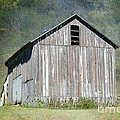 Abandoned Vintage Barn In Illinois by Luther Fine Art