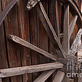 Abandoned Wagon Wheel by Dan Hartford