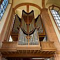 Abbey Organ by Jenny Setchell