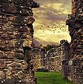 Abbey Ruins by Amanda Elwell