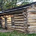 Abbie Gardner Cabin by Amelia Painter