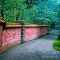 Abby Aldrich Rockefeller Garden by Edward Fielding