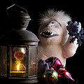 Abominable Christmas by Scott Wyatt