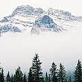 Above The Fog by Rodney Troch