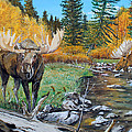 Above The Lake ..moose by Alvin Hepler