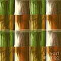 Abstract 1 by Ann Calvo