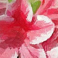 Abstract 106 Pink Painterly Flowers by Barbara Griffin