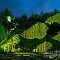 Abstract Art Projection Over Night Nature Scenery by Oleksiy Maksymenko