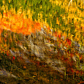 Abstract Autumn Reflections  by Jeff Sinon