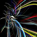 Abstract Bird In Light by Linda Galok