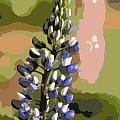 Abstract Blue Lupine by Kenny Glotfelty