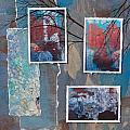 Abstract Branch Collage Trio by Anita Burgermeister