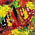 Abstract Butterfly #3 Autumn by Saundra Myles
