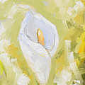 Abstract Calla Lily by Veronica Minozzi
