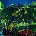 Abstract Colorful Light Projection On Trees by Oleksiy Maksymenko