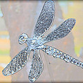 Abstract Dragonfly by Sherman Perry