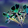 Abstract Flower - Digital Abstract by Christiane Schulze Art And Photography