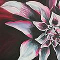 Abstract Flower by Rachel Ziemann