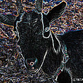 Abstract Goat by George Pedro