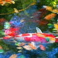 Abstract Koi 1 by Amy Vangsgard