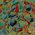Abstract Rose Petals by Mae Wertz