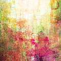 Abstract Print 14 by Filippo B