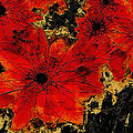 Abstract Red Flower Art  by Ann Powell